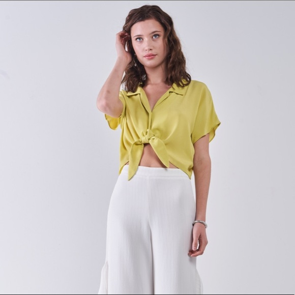 Collared Short Sleeve Self-Tie Front Cropped Top